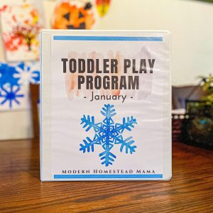 January Toddler Play Program