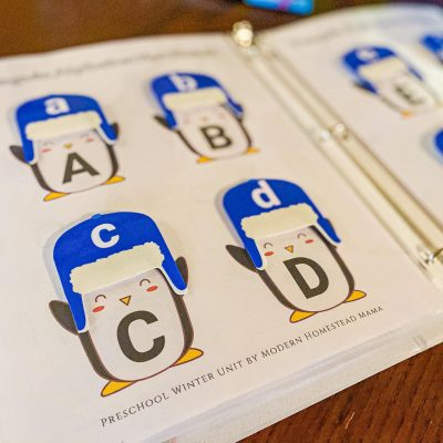 Penguin Alphabet Hat Matching Winter Printable