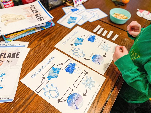 Snowflake Homeschool Nature Study