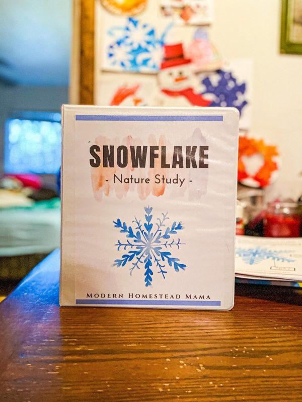 Snowflake Nature Study