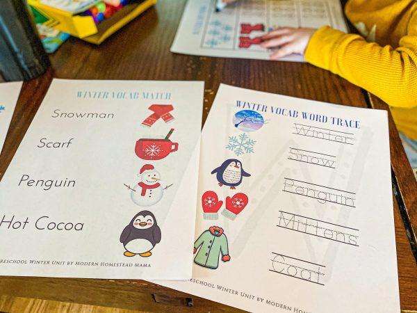 Winter Preschool Workbook | Printable Homeschool Pre-K Workbook