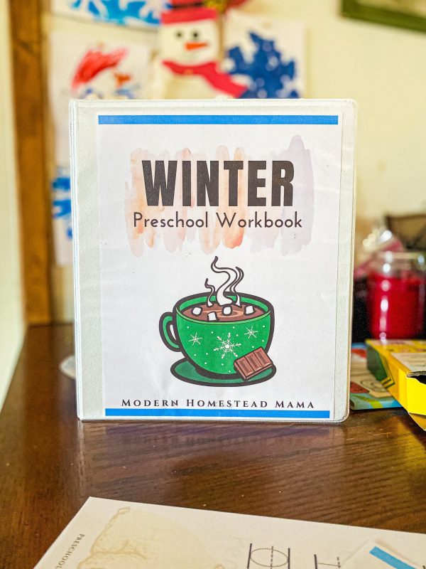 Winter Preschool Workbook | Printable Homeschool Pre-K Workbook