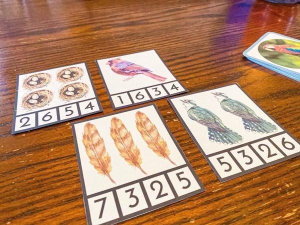 Bird Clip Cards