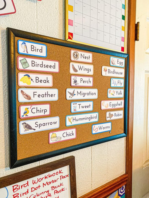 Bird Preschool Unit Vocabulary Cutouts