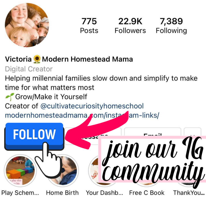 join our IG community