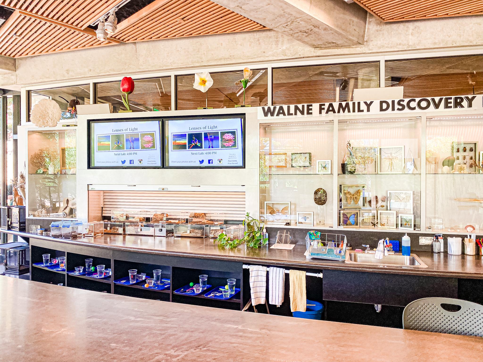 Dallas Arboretum Discovery Lab
