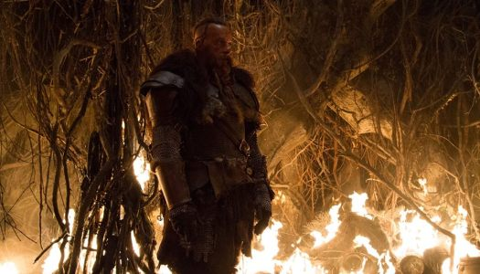 The Last Witch Hunter Has Been Unleashed!