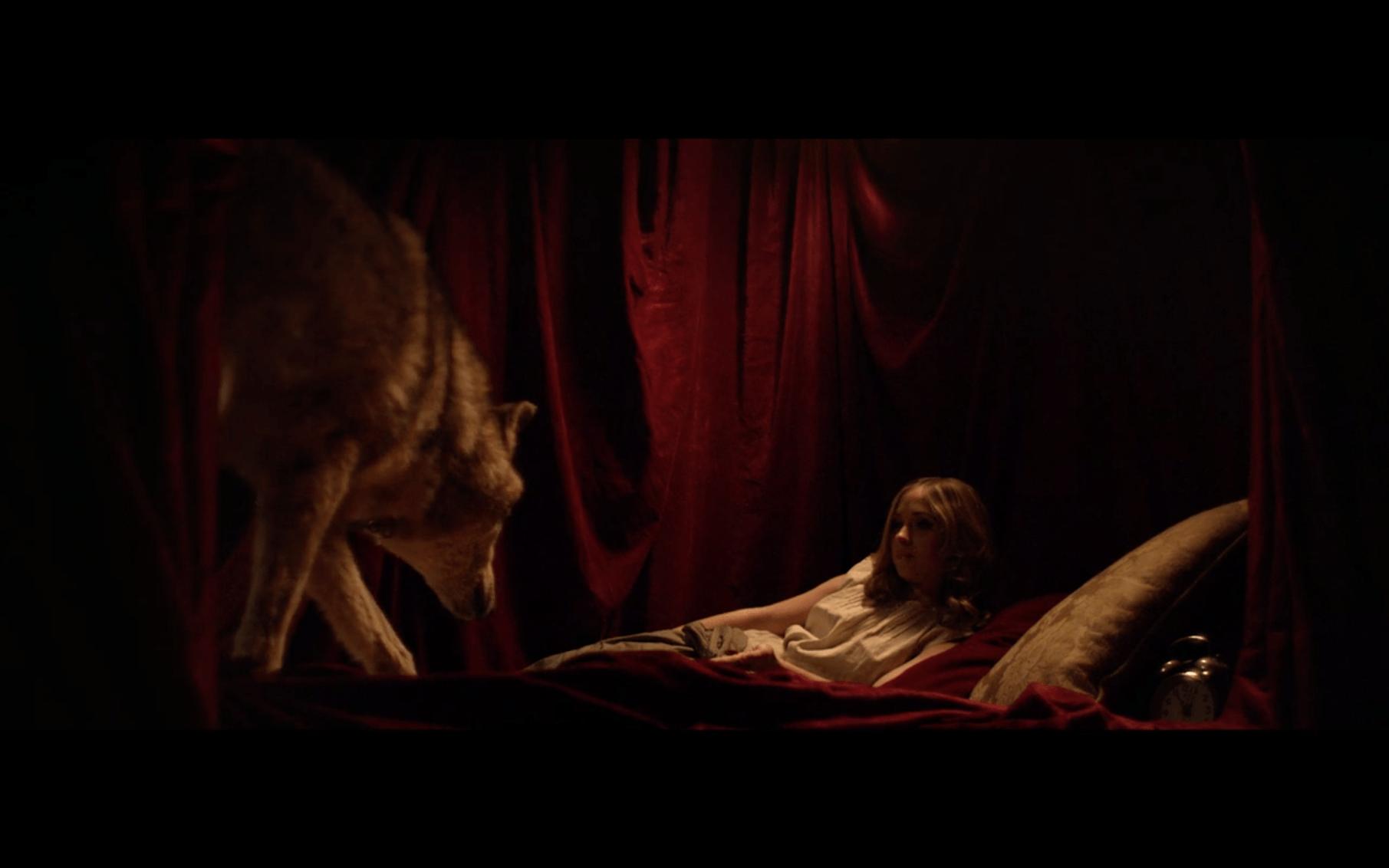 Q&A: Horsehead Director Romain Basset