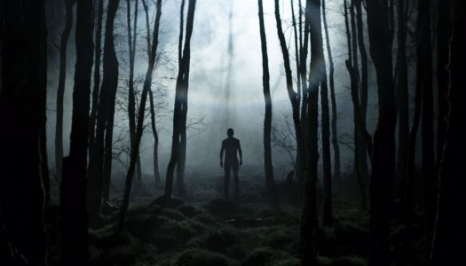 Something in the woods is 'Without Name'