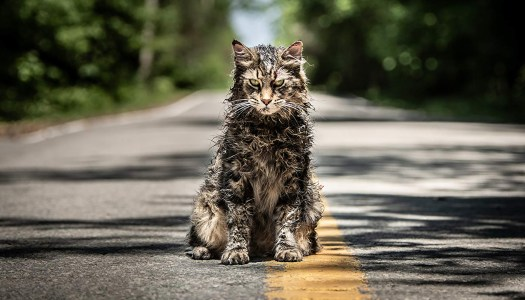 Sometimes Dead Is Better At The 'Pet Sematary' [Trailer]
