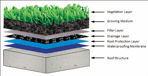 Green roofs explained