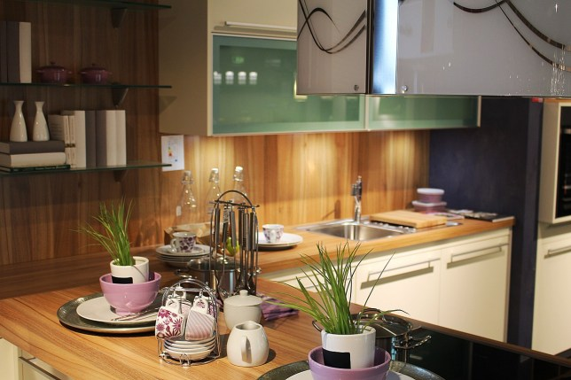 Clean kitchen with lots of greenery