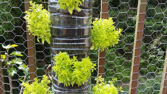 Vertical garden made from bottles