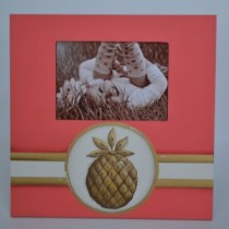 pineapple-frame-300x300