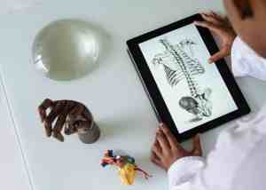 unrecognizable african american scientist studying anatomy with tablet at cme conference