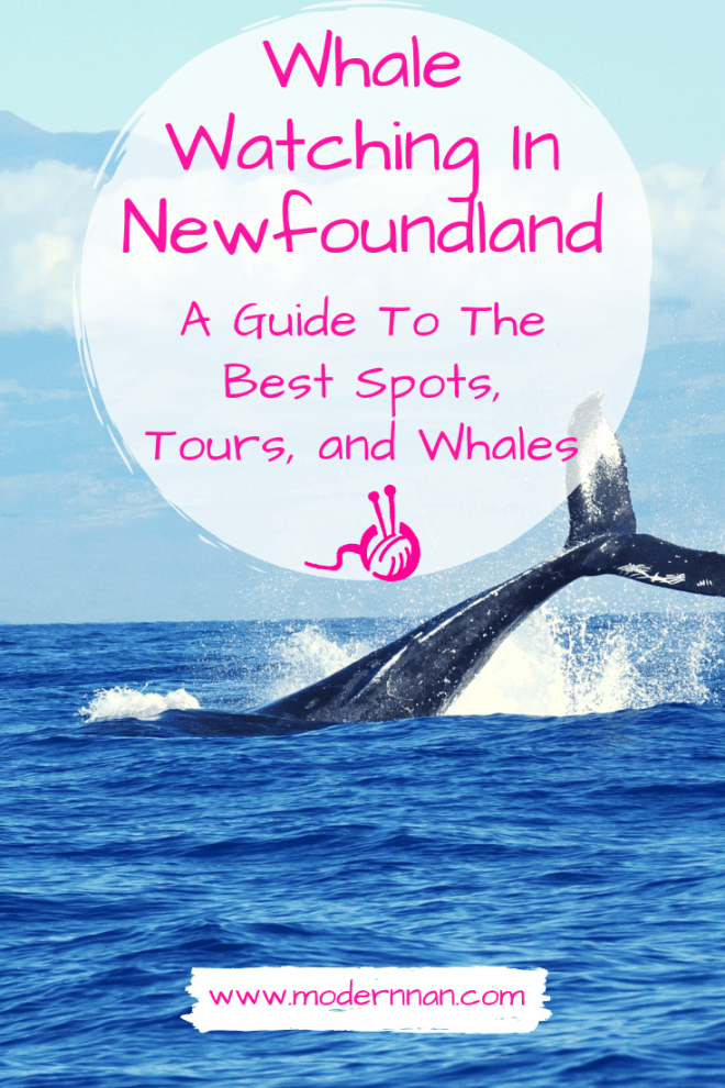 "Pinterest title graphic. A photo of a whale fluke with the title ""Whale Watching In Newfoundland, A Guide To The Best Spots, Tours, And Whales."" The pink Modern Nan yarn logo is below the title and the web address is at the bottom."