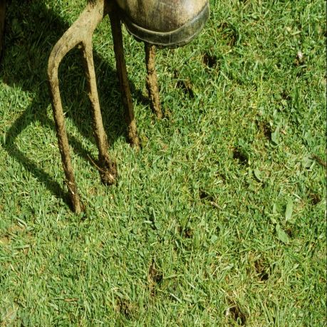 spiking-lawn-with-fork-to-improve-drainage-126021700-5aef71d2a9d4f9003718468f_900x900.jpg