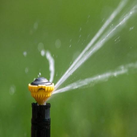 ws-outdoor-irrigation-sprinkler-head-legacy_900x900.jpg