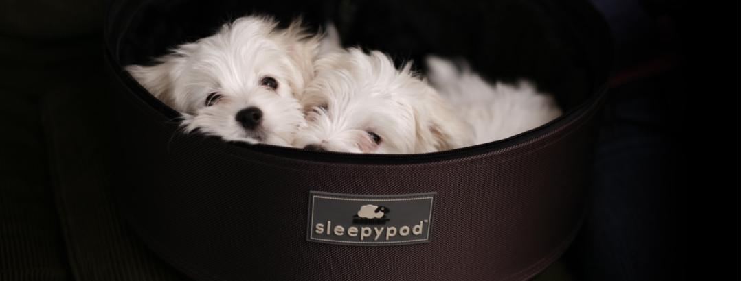 SleepyPod reiseveske de små detaljene som teller