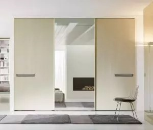 복도에 내장 된 옷장. 공간 조직의 구성 및 작성의 계획 + 디자인 및 아이디어의 170 개 사진