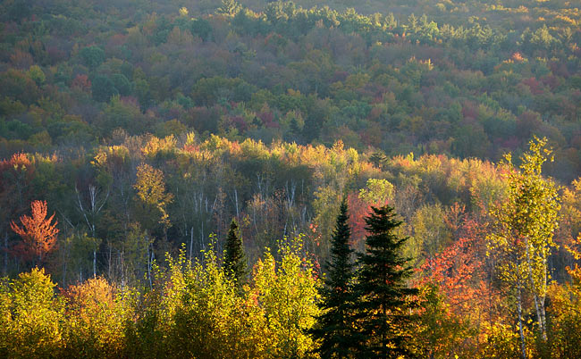fall-colors-in-new-hampshire