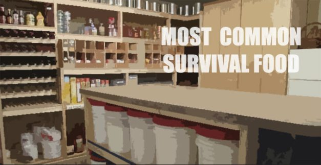 most common survival food
