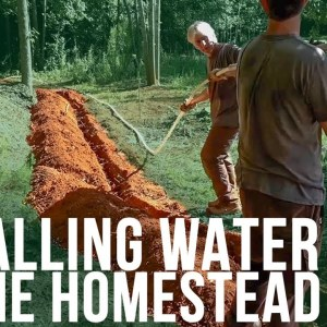 Installing Water | Forest to Farm