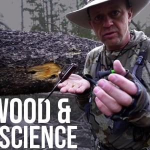 Fatwood and Fire Science | TJack Survival