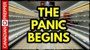 Its All Crashing Down! Total Supply Chain Chaos