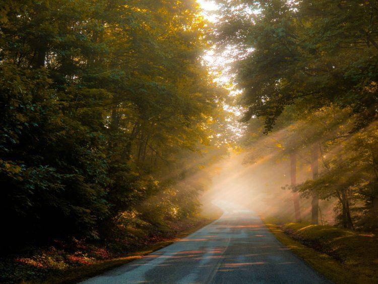 The Blue Ridge Parkway Road Trip