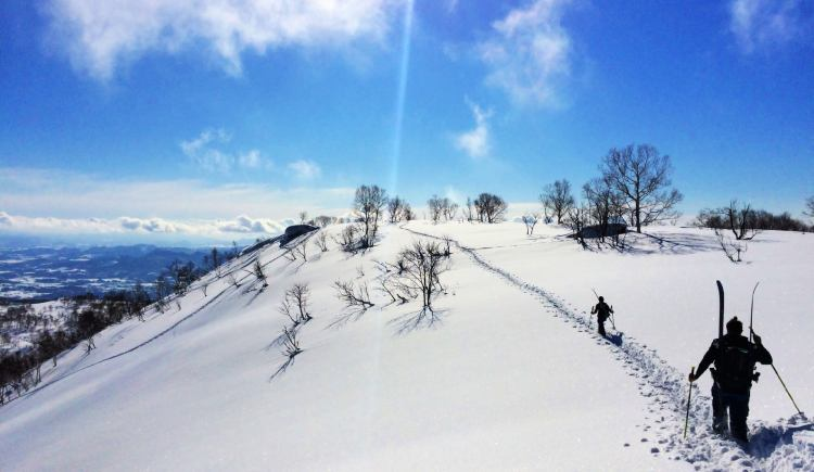 Niseko, Japan is one of the best places to ski in the world