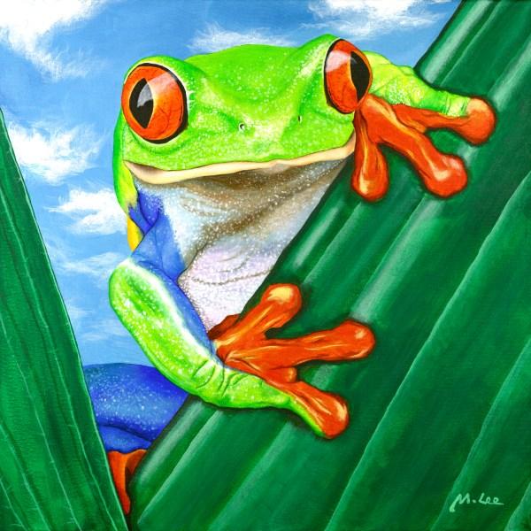 Ellie the Tree Frog