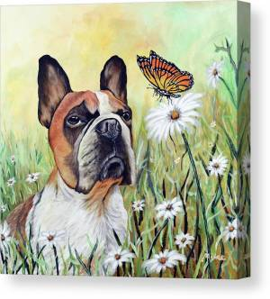 gizmo-and-the-butterfly-mikey-lee-canvas-print