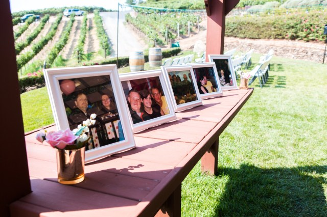 intimate vineyard wedding