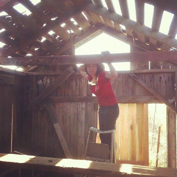 We disassembled a 1---year old chicken coop which became the cabin walls