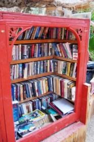 Saline Valley Lending Library