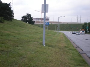 bus stop sign attached to a light pole on the grassy side of the road, no sidewalk
