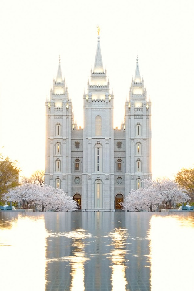 LDS Temple Dress