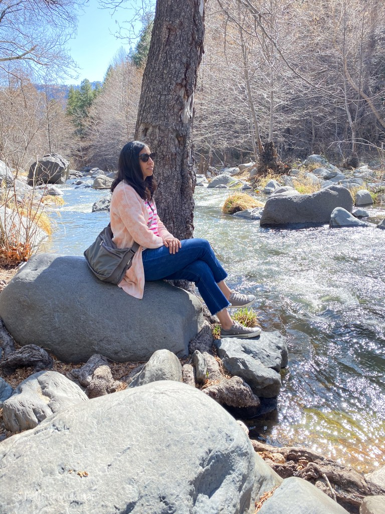 two days in Sedona visit Cococino National Forest