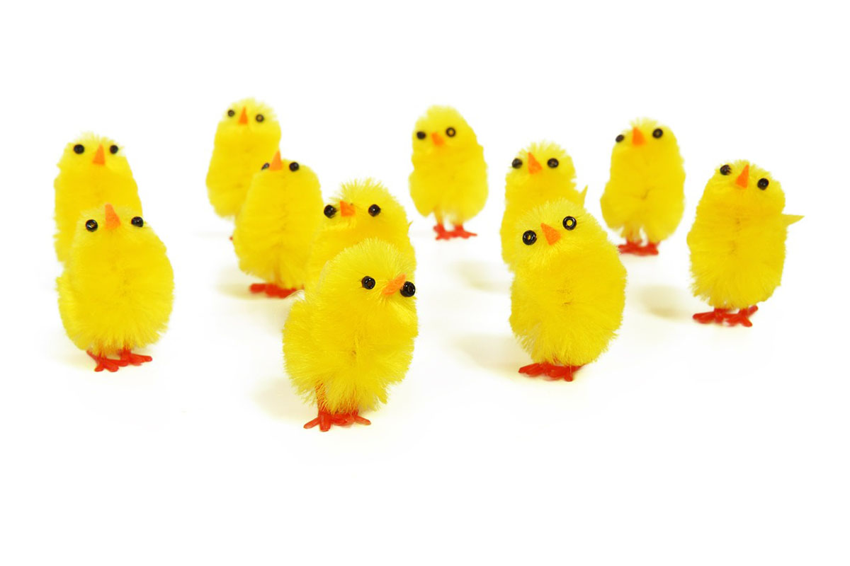 chicks-zero-inbox-Modewest-Workplace