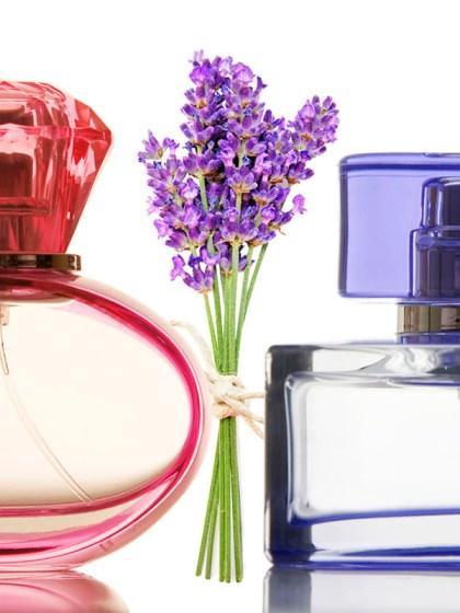 essential-oils-bottles-lavender-Modewest