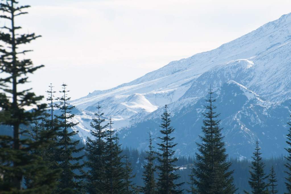 The Great PNW - Camping, Hiking, Hot Springs, and Other Things to do in the PNW. A section of Mt. St. Helens, seen from the Gifford Pinchot National Forest in Washington State.