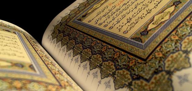 كم عدد السور التي نزلت على الرسول في مكة موضوع