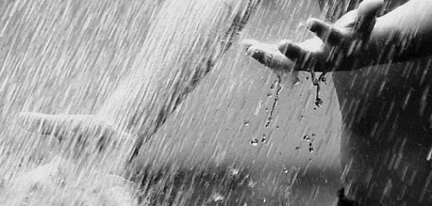 كلام عن المطر موضوع