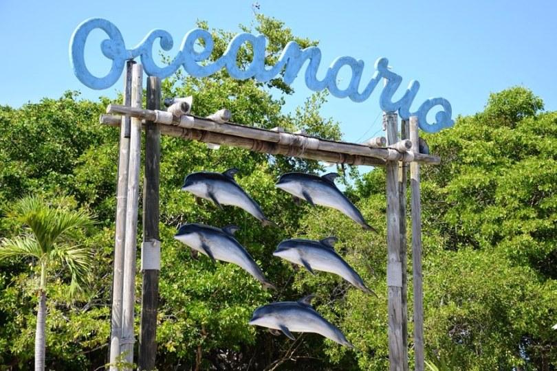 Oceanario-cartagena
