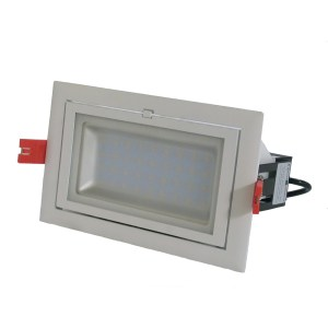 Rectangular Adjustable Downlight