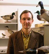 Kees Moeliker, with some ducks