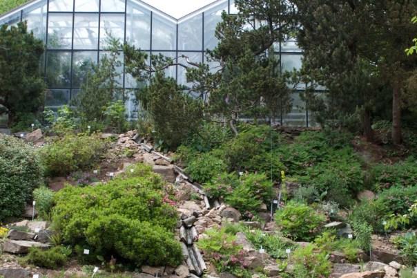 Gewächshaus im Forstbotanischer Garten Tharandt