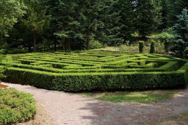 Labyrinth im Forstbotanischen Garten Tharandt