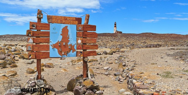 Penguin Island with Darwin Expeditions atlantic coast of argentina Photograh
